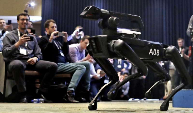 Dog-like robots now on sale for $75,000, with conditions