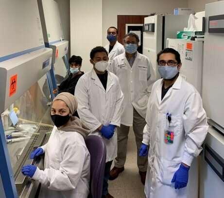 Drug for rare disorder shows promise for treating herpes viruses