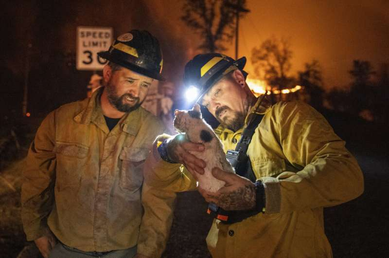 Dying winds give crews hope in Northern California fires