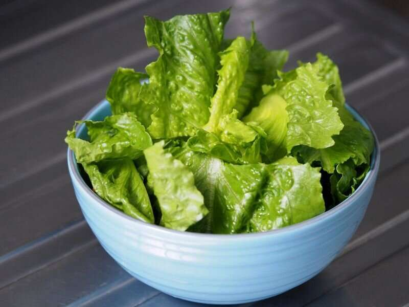 E. coli outbreak may be linked to recalled romaine lettuce