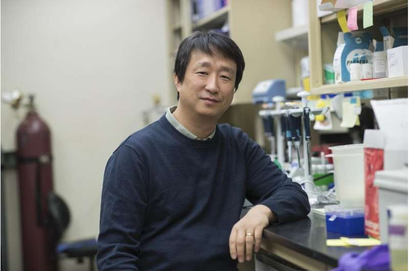 Essential key to hearing sensitivity discovered