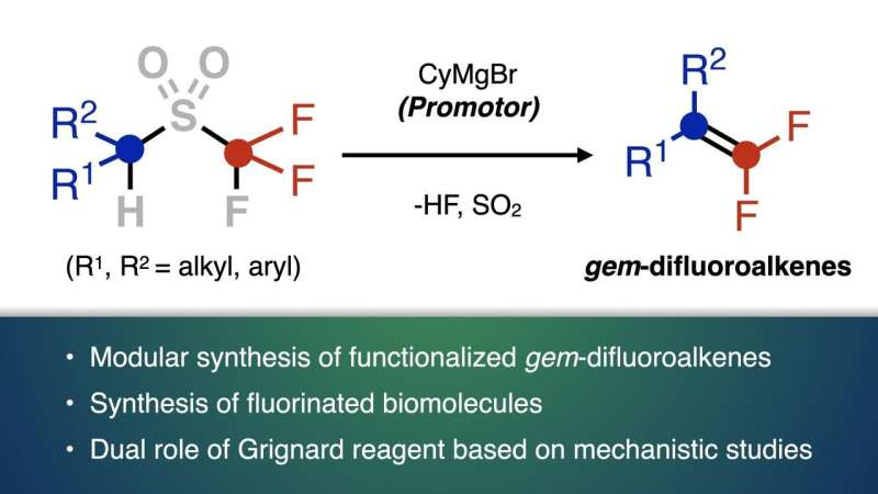 Establishment of a rapid synthesis method for useful organic fluorine compounds