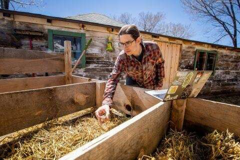 Experts apply microbiome research to agricultural science to increase crop yield