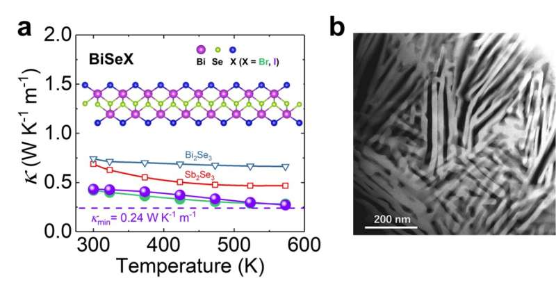 Extremely low thermal conductivity in 1D soft chain structure BiSeX (X = Br, I)