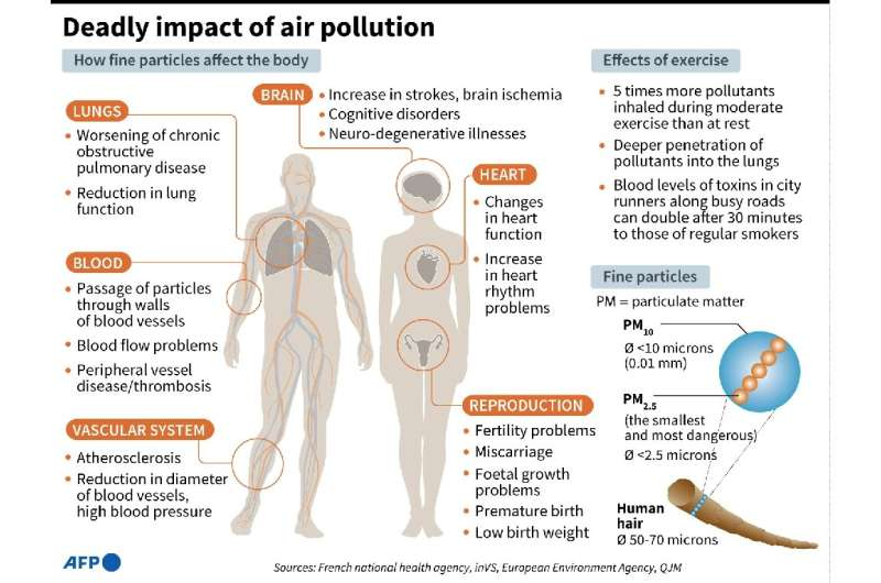 Factfile on the impact of air pollution on human health