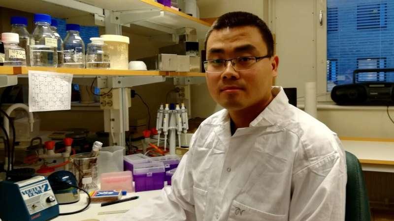 Factors that ensure cellular protein production