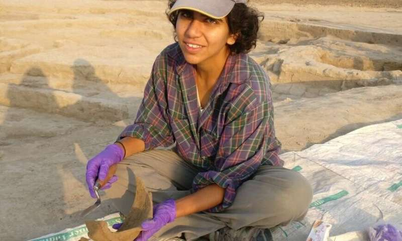 Fatty residues on ancient pottery reveal meat-heavy diets of Indus Civilization