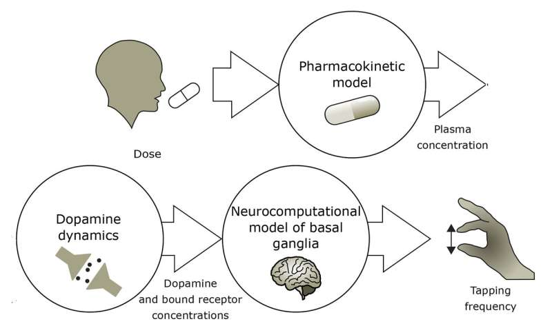 Finding right drug balance for Parkinson's patients