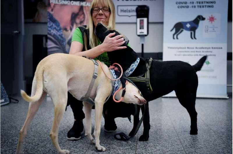 Finland deploys coronavirus-sniffing dogs at main airport