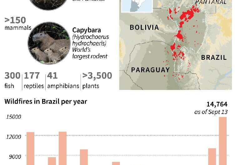 Fires rage through world's largest tropical wetlands