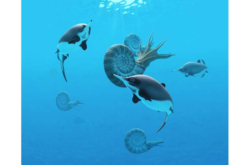 Fishing rod 'selfie stick' and scientific sleuthing turn up clues to extinct sea reptile