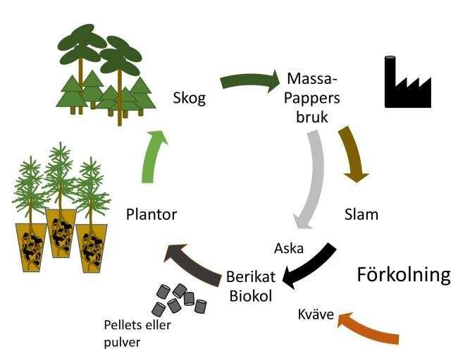 Fertilización forestal con residuos de papelera