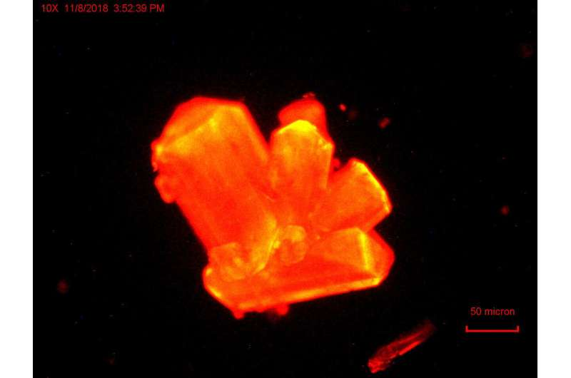 FSU news: Scientists discover heavy element chemistry can change at high pressures