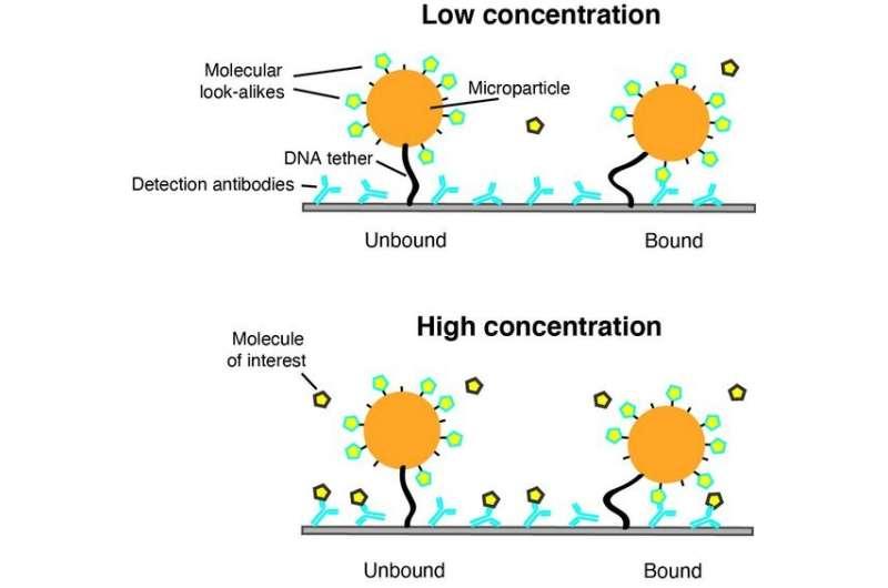 Future biosensor for continuous monitoring using molecular look-alikes