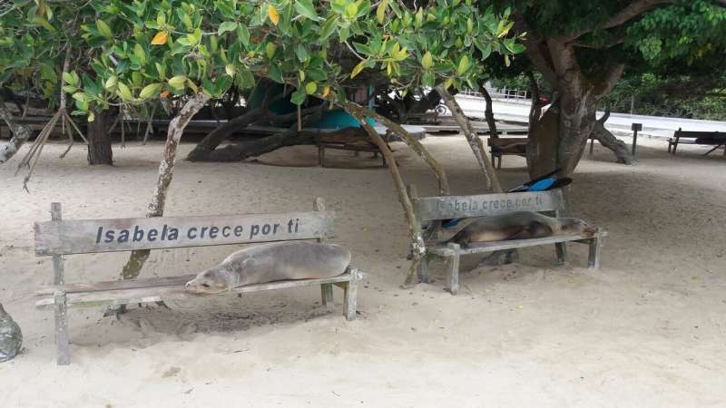 Galapagos guides to 'barcode' wildlife