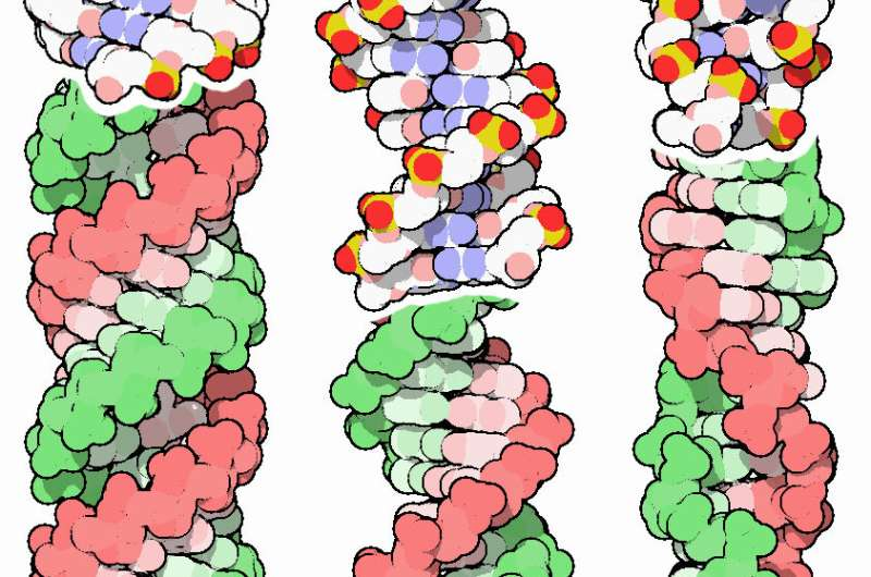 Genetic code evolution and Darwin's evolution theory should consider DNA an 'energy code'