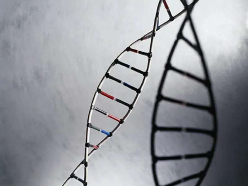 Genomic alterations distinct for black men with prostate cancer