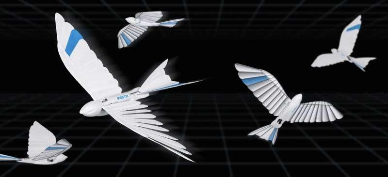 German firm creates bionic birds