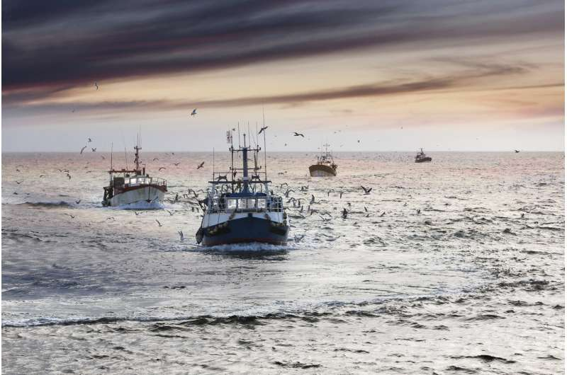 Global fisheries could alleviate a global food emergency in extreme situations