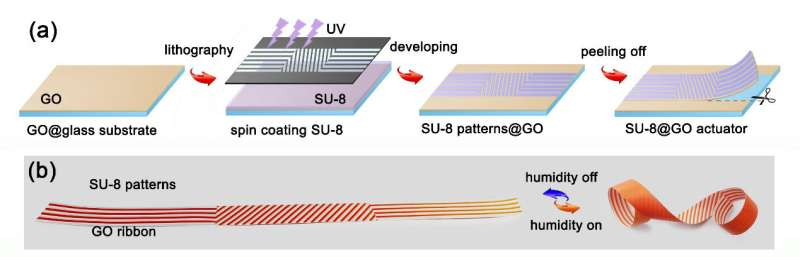 Graphene-based actuator swarm enables programmable deformation