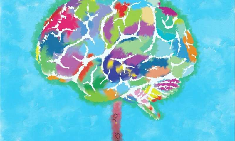 Happiness and the evolution of brain size