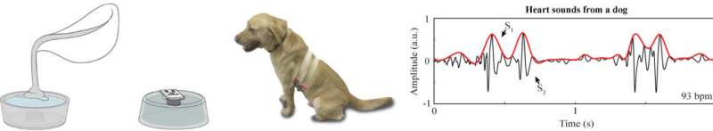 Health tracking sensor for pets and people monitors vital signs through fur or clothing