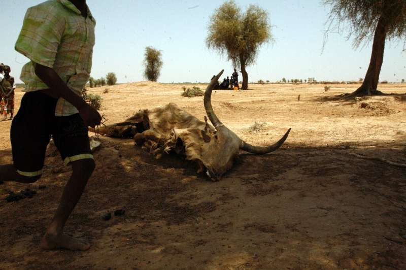Heat waves are a direct threat to human live and can cause food shortages as well