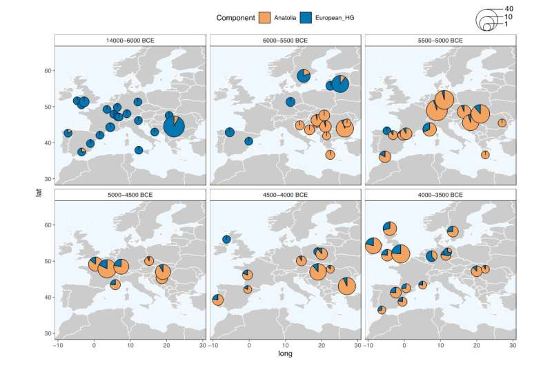 Heightened interaction between neolithic migrants and hunter-gatherers in Western Europe