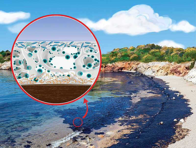 How are microbes attracted to an oil spill?