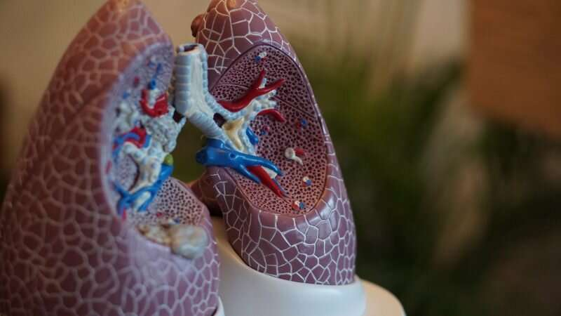How blocking iron drives the lung immune system to control infection