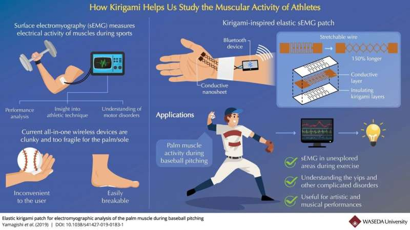 How kirigami can help us study the muscular activity of athletes