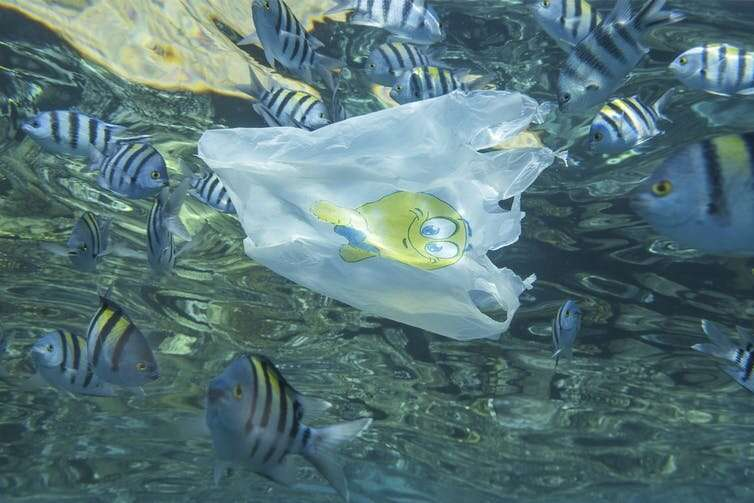 How life-cycle assessments can be (mis)used to justify more single-use plastic packaging