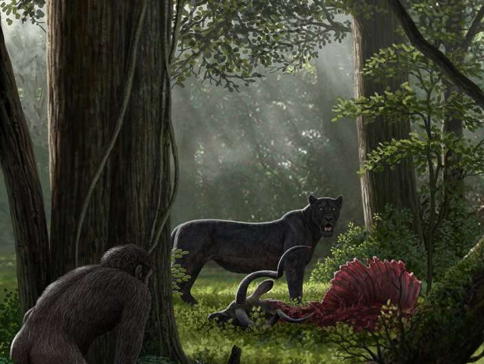Human-caused biodiversity decline started millions of years ago