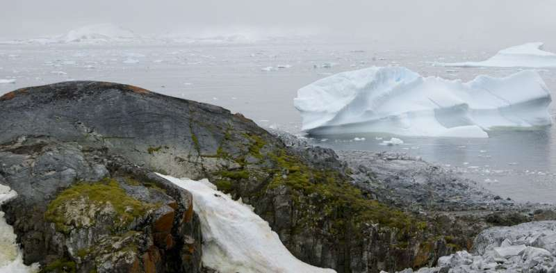 Humans are encroaching on Antarctica's last wild places, threatening its fragile biodiversity