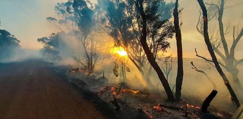 I made bushfire maps from satellite data, and found a glaring gap in Australia's preparedness