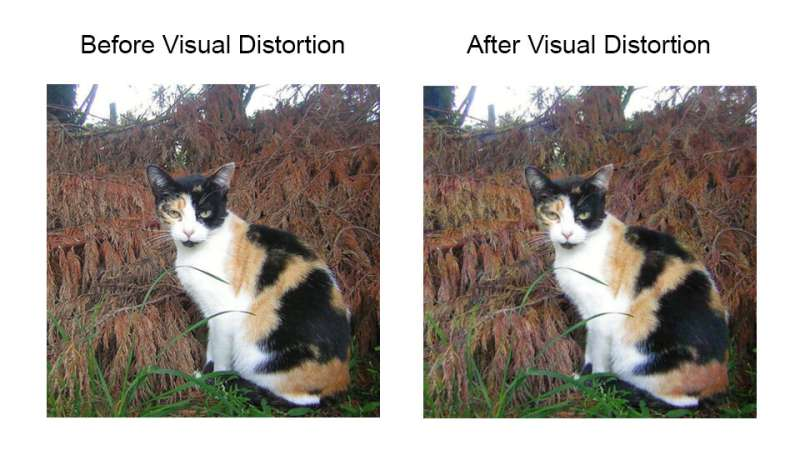 Innovation enhances digital privacy by hiding images from the prying eyes of AI