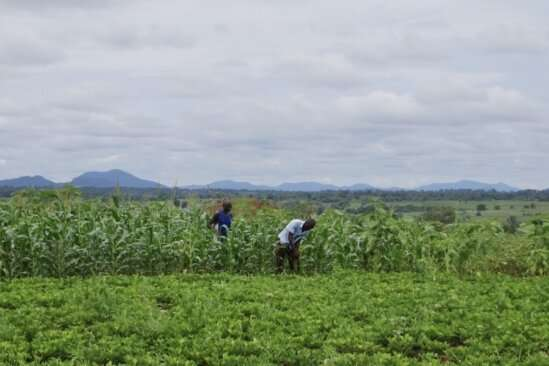 Insights on the enormous impact seasons have in agricultural economies