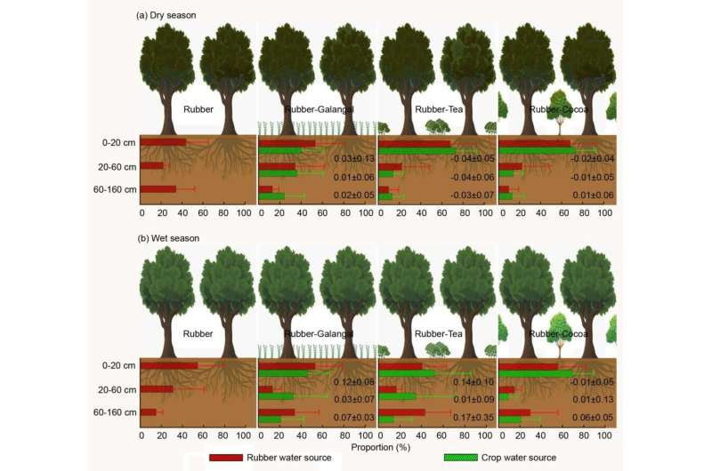 Intercrops Enhance Soil Moisture Availability in Rubber Agroforestry Systems