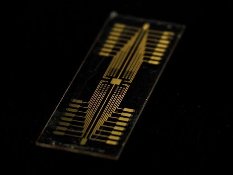 Ion conducting polymer crucial to improving neuromorphic devices