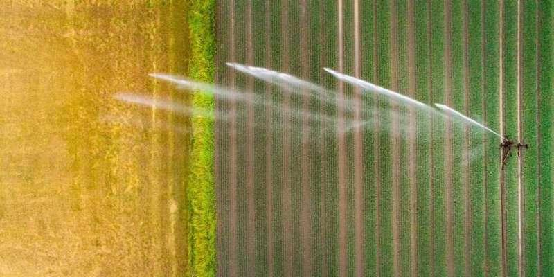 Irrigation alleviates hot extremes