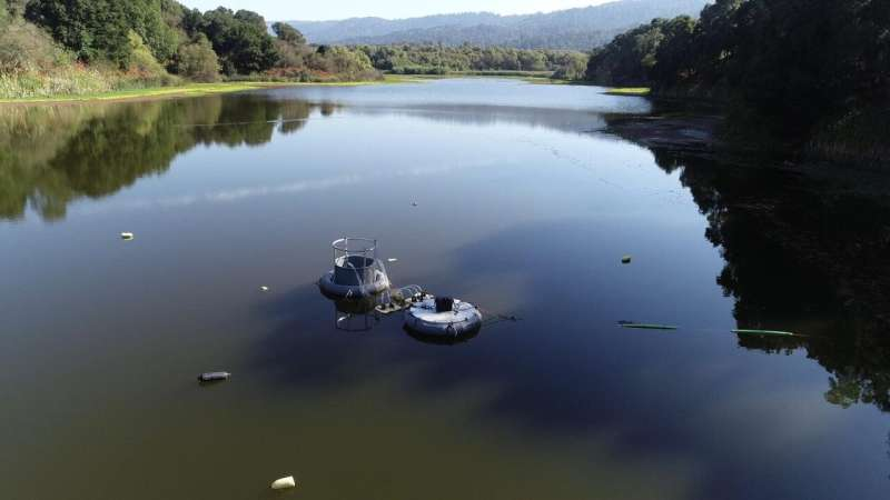 Is there a technological solution to aquatic dead zones?