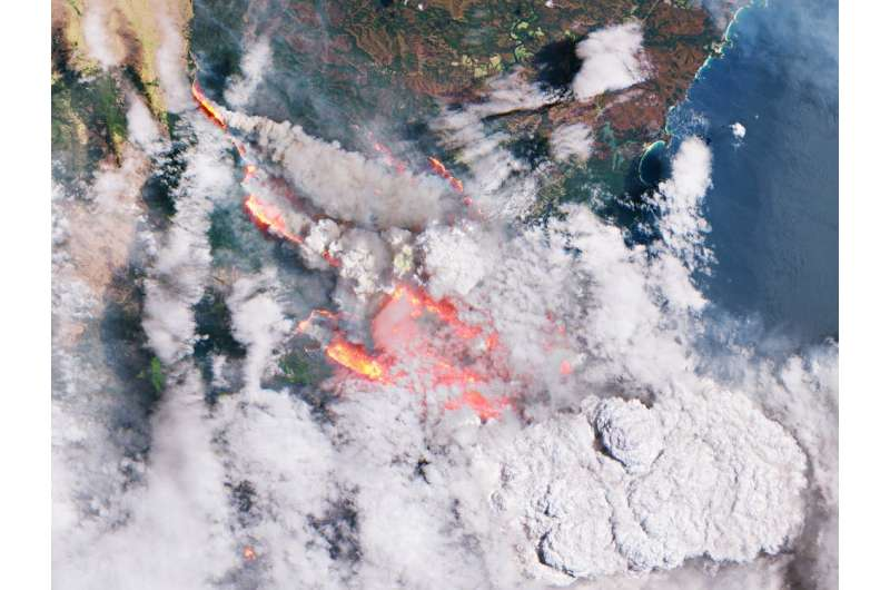 It's 12 months since the last bushfire season began, but don't expect the same this year