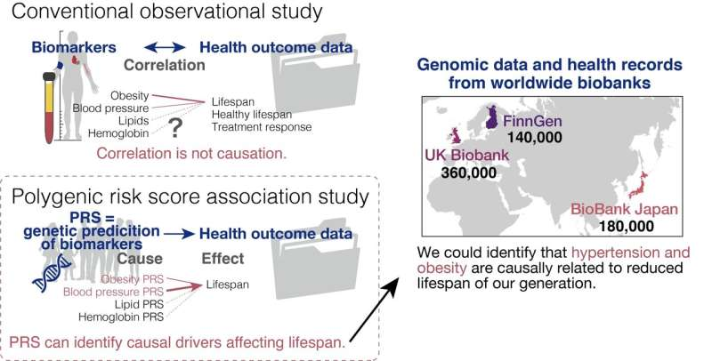 It's in our genome: Uncovering clues to longevity from human genetics