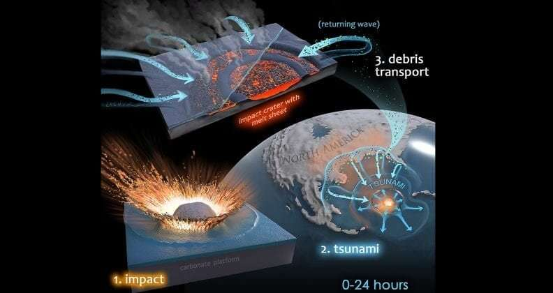 It was microbial mayhem in the Chicxulub crater, research suggests
