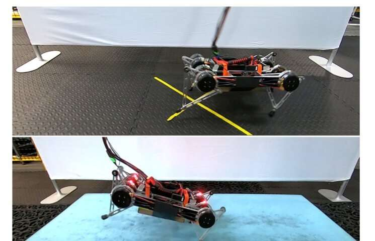 [Jelani-new author] Google's robot learns to walk in real world