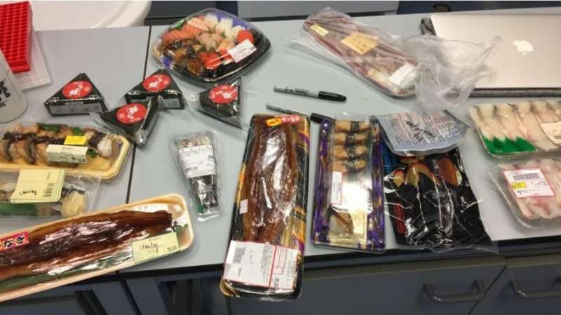 Lab reveals the surprising prevalence of endangered European eel in Hong Kong's food supply