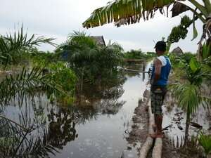 Land use change leads to increased flooding in Indonesia, study shows