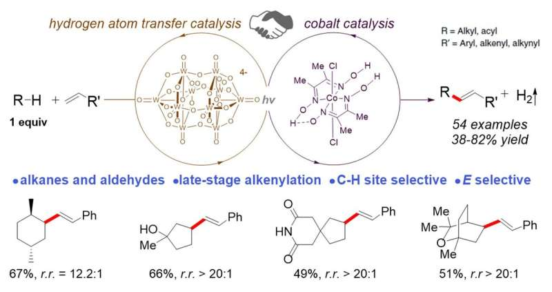 Late-stage functionalisation of carbon-hydrogen bonds