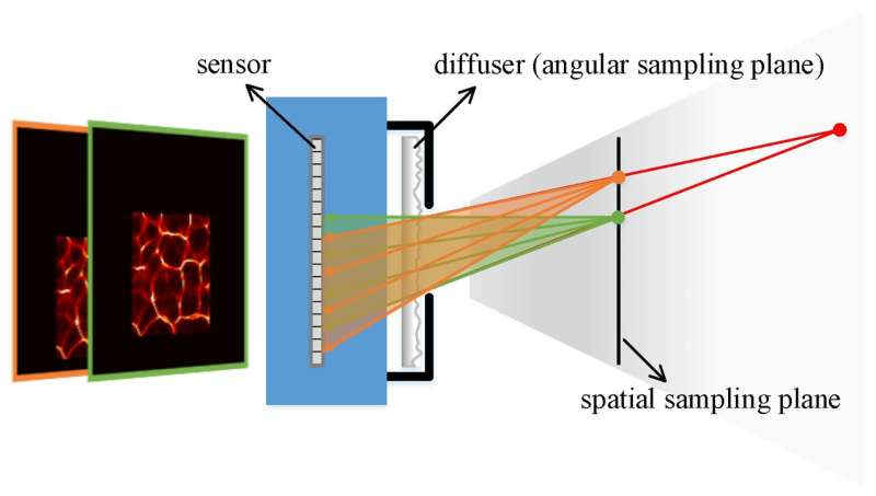 Lensless light-field imaging through diffuser encoding