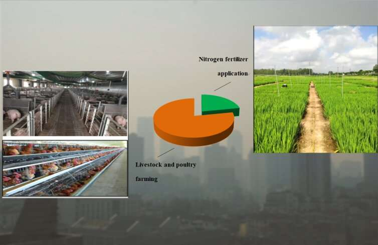 Livestock and poultry farming should be the future focus of agricultural ammonia emissions control